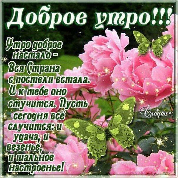 С добрым утром картинки с пожеланиями женщине красивые цветы