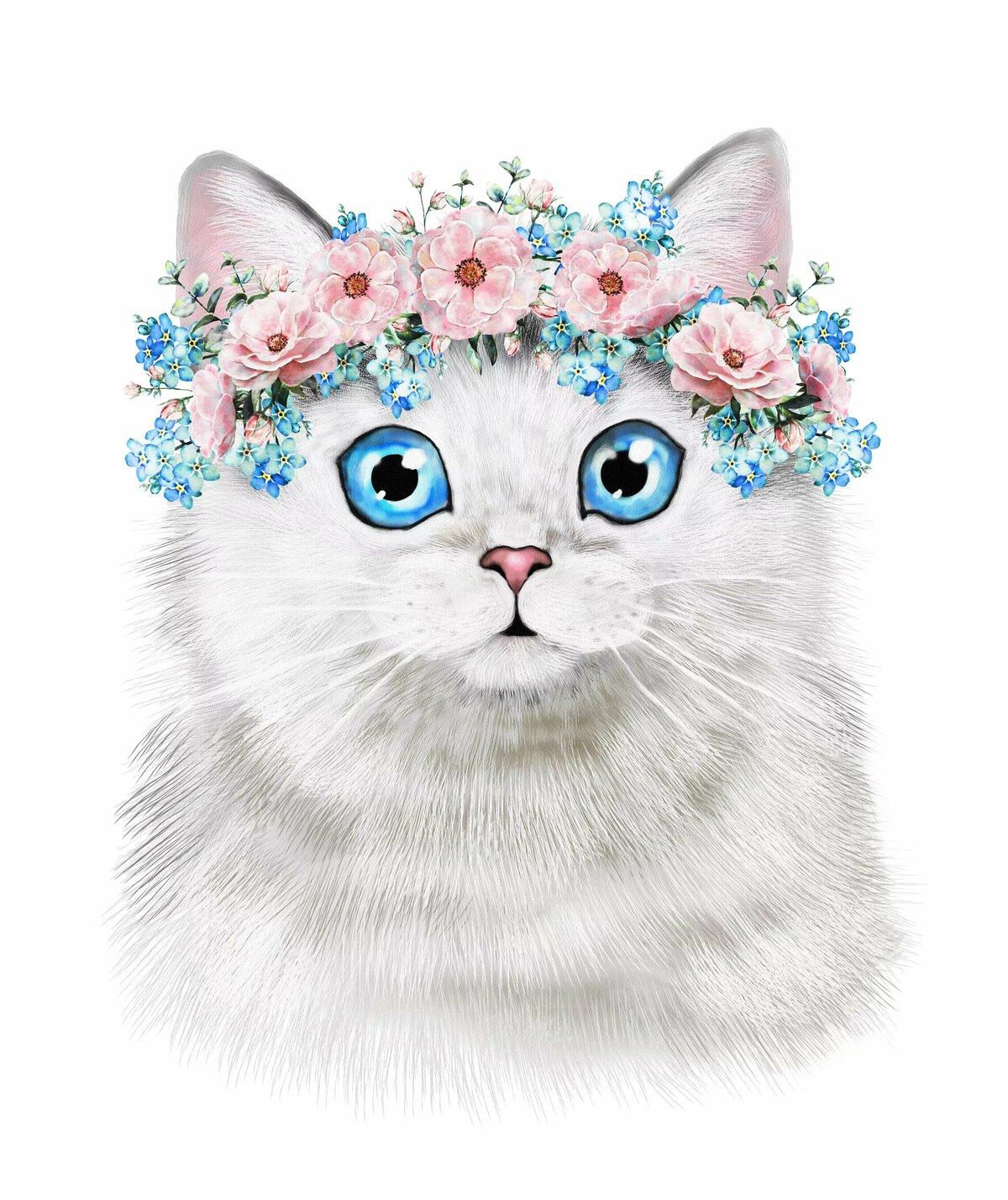 Копировать картинки кошек
