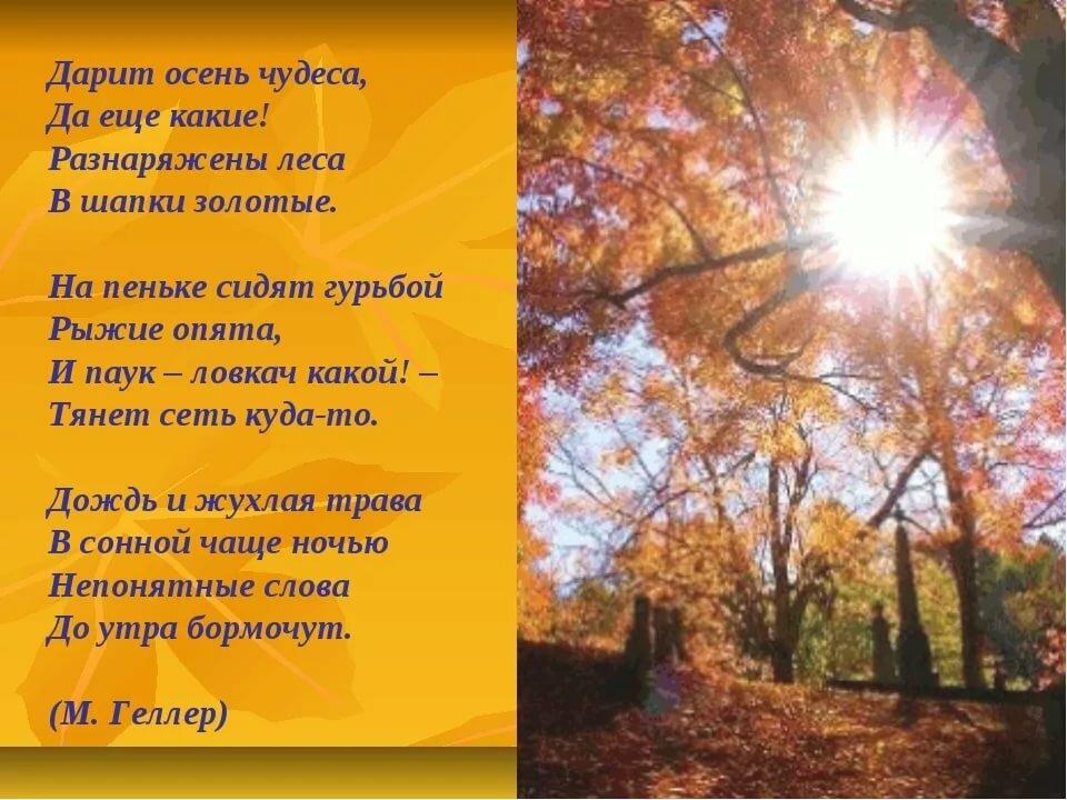 Красивые стихи об осени русских поэтов