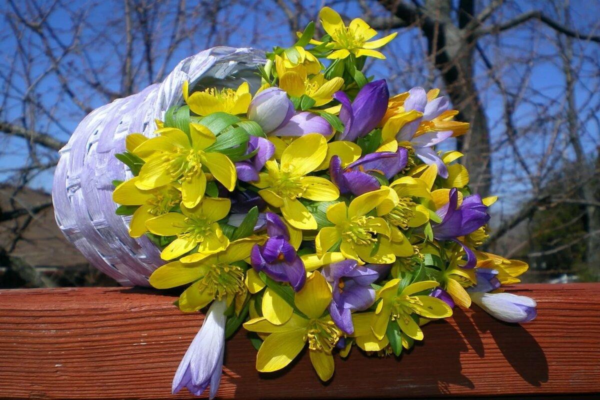 открытка весенние цветы фото спокойно отношусь тому