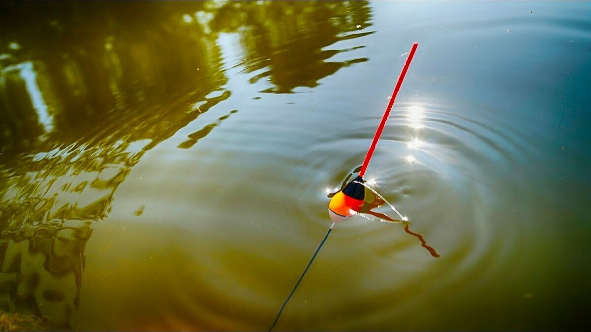 ловля рыбы на удочку в картинках ряды