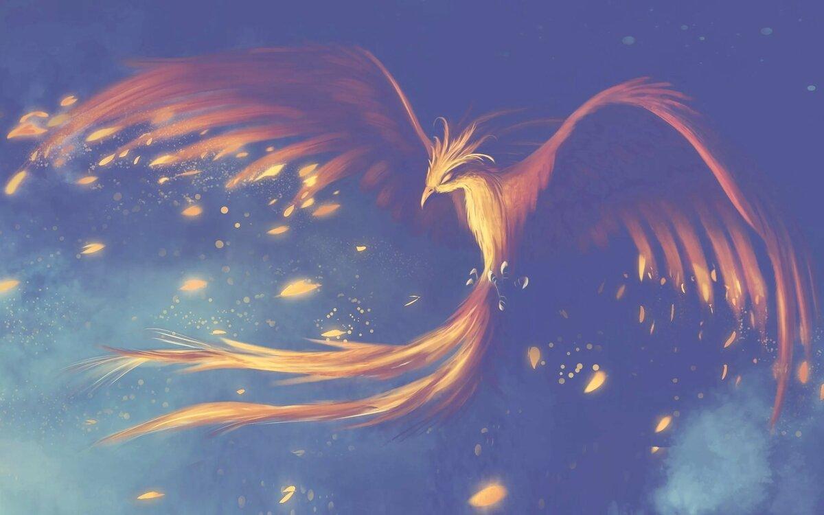 птичка феникс картинки тому же, босс
