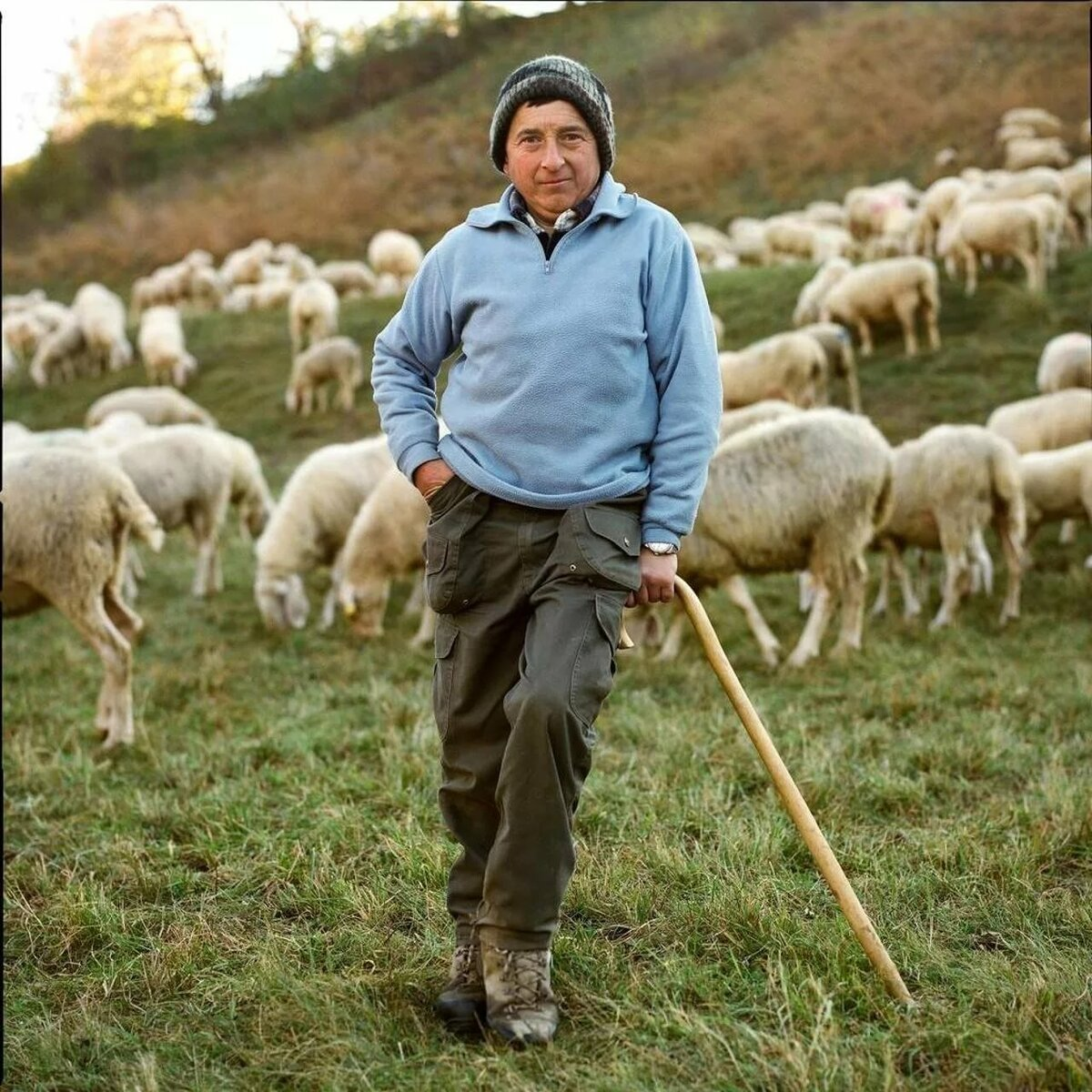чаще картинка пастуха с бараном ручная