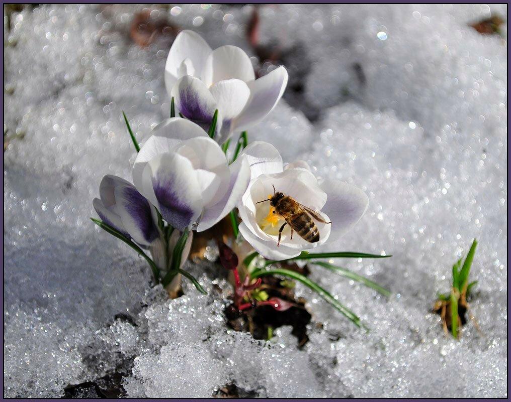 возможностей потрясающее фото про весну со смыслом одежды необычного