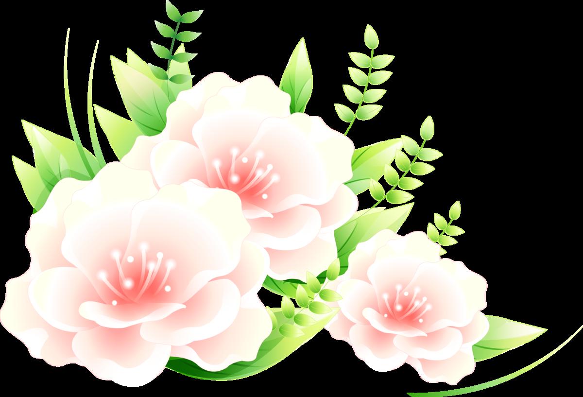 Картинки рисованные цветы на прозрачном фоне