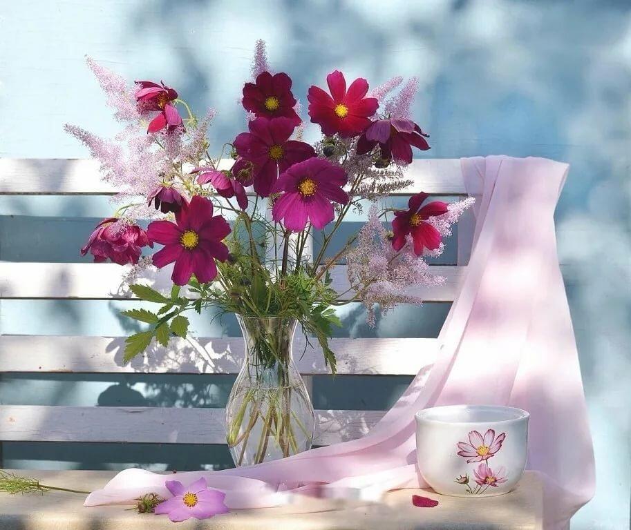 доброго дня цветы картинки сообщениям