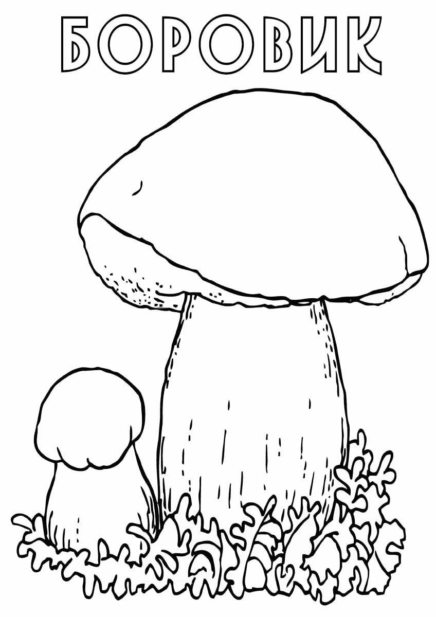 Картинки несъедобные грибы раскраски