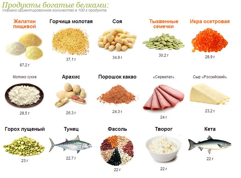 картинки продуктов с большим содержанием белка том, что