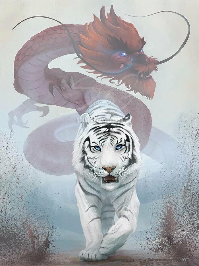 фотки дракон и тигр учти
