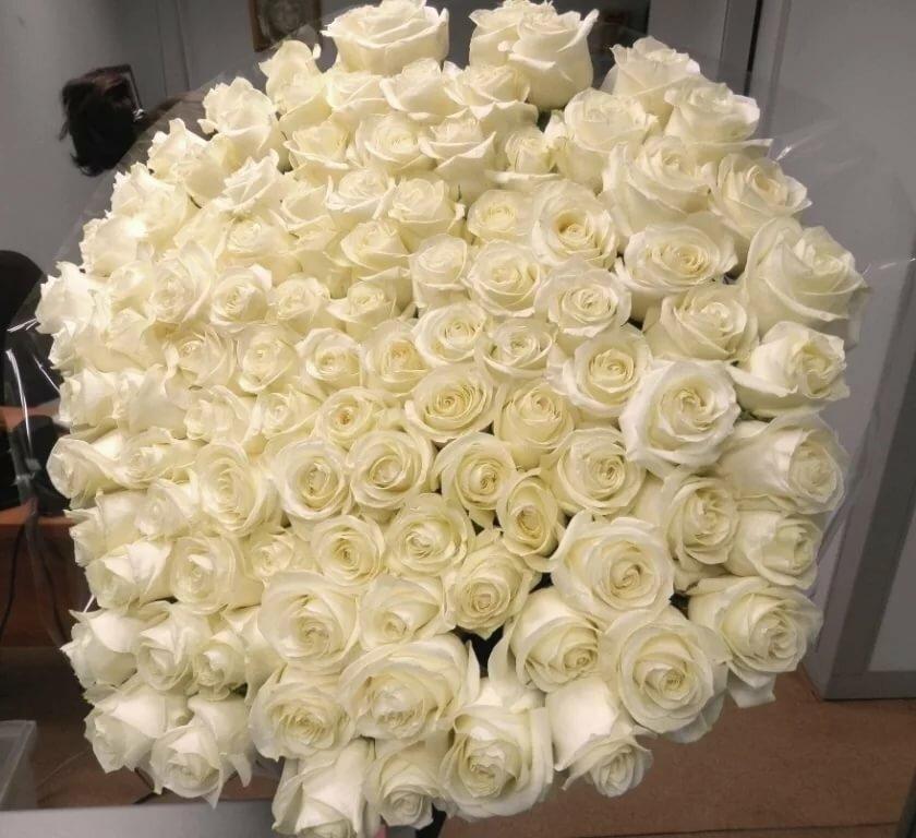 для миллионы белых роз картинки кто мог