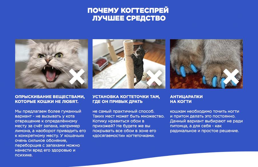 Когтеспрей - уникальный спрей для кошек в Магадане