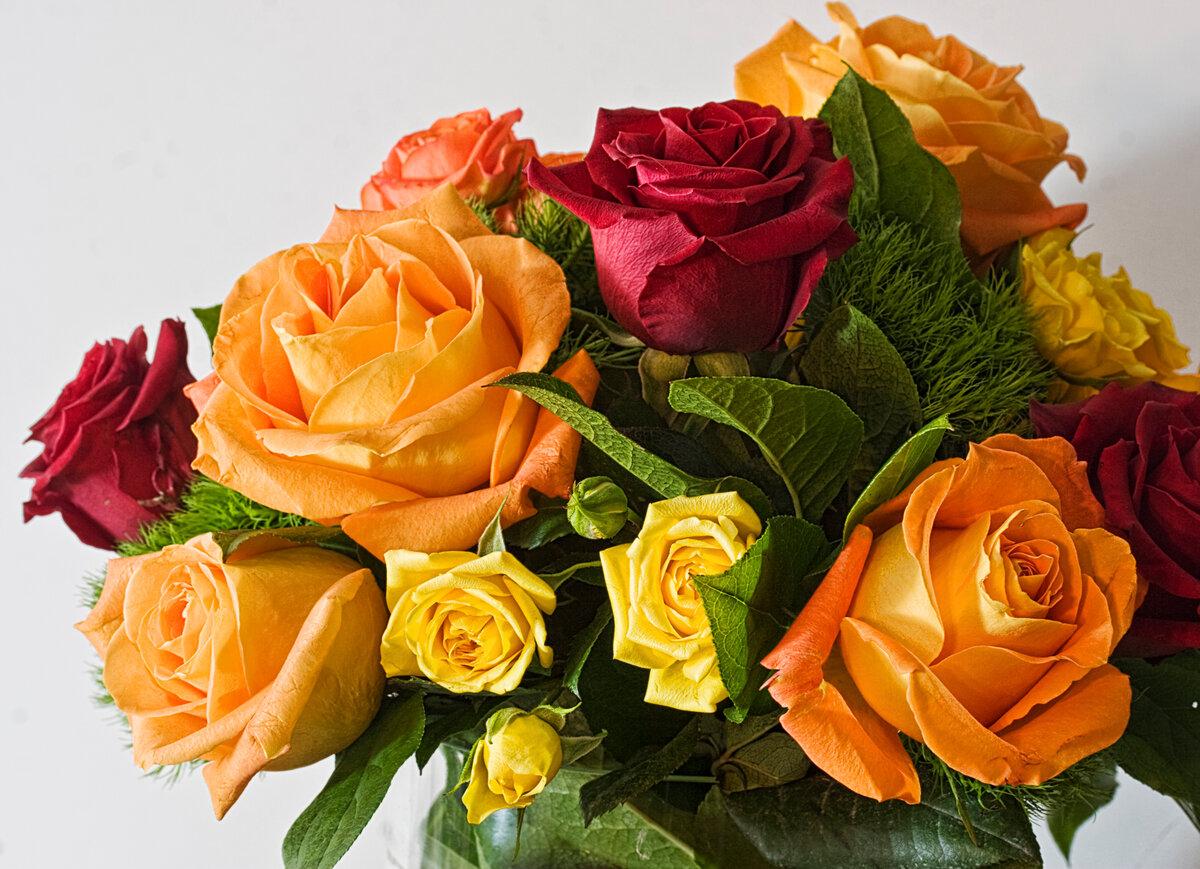 Видео открытки в одноклассниках, цветы для