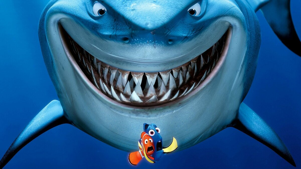 Смешные картинки акул