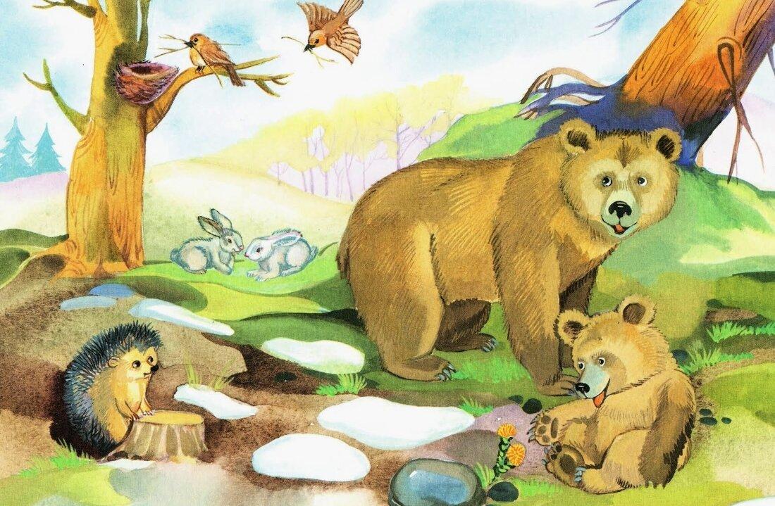 Картинки о природе для детей старшей группы