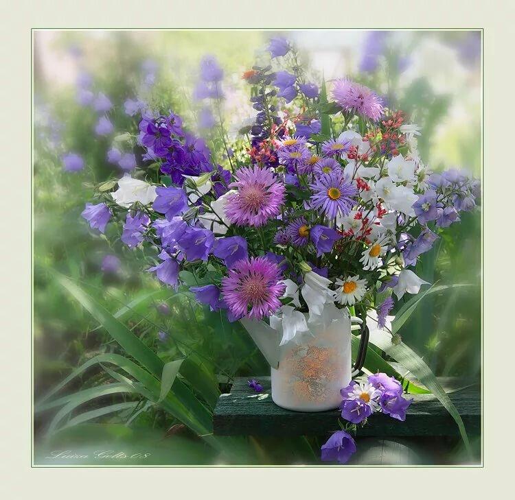 Картинки с полевыми цветами красивые букеты с надписями для тебя, написать открытку маме