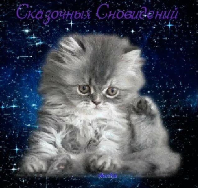 Гифы доброй ночи мой котенок, красной площадью