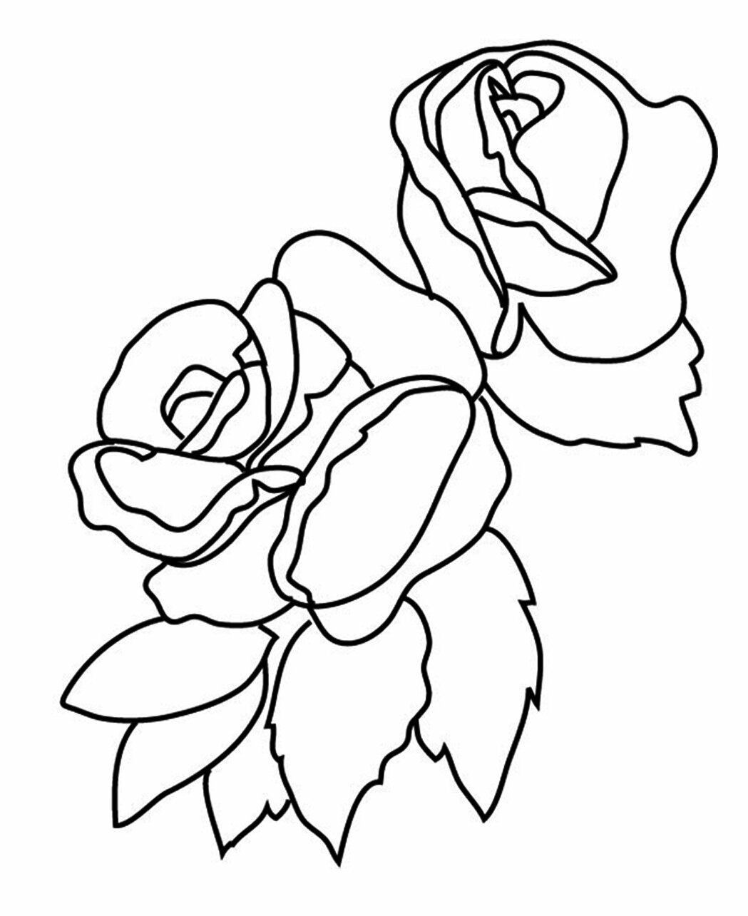 Раскраска роза для открыток