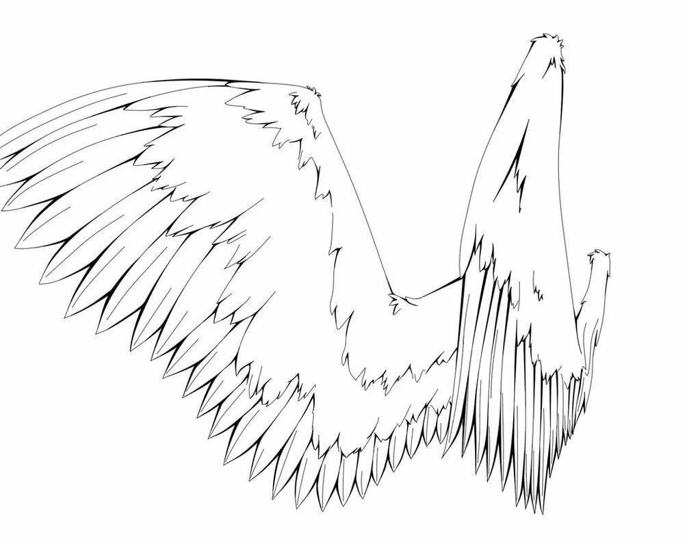 Днем, картинки ангела с крыльями для срисовки