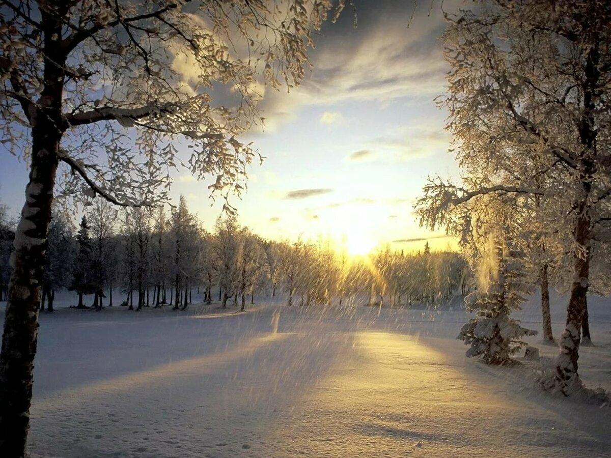 красивые картинки снегопада днем фотографе ольга
