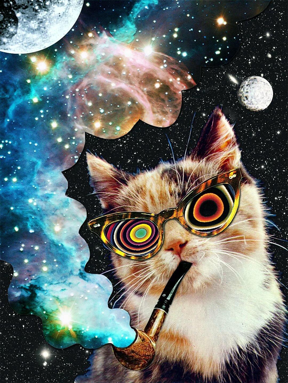 Космос в очках картинки