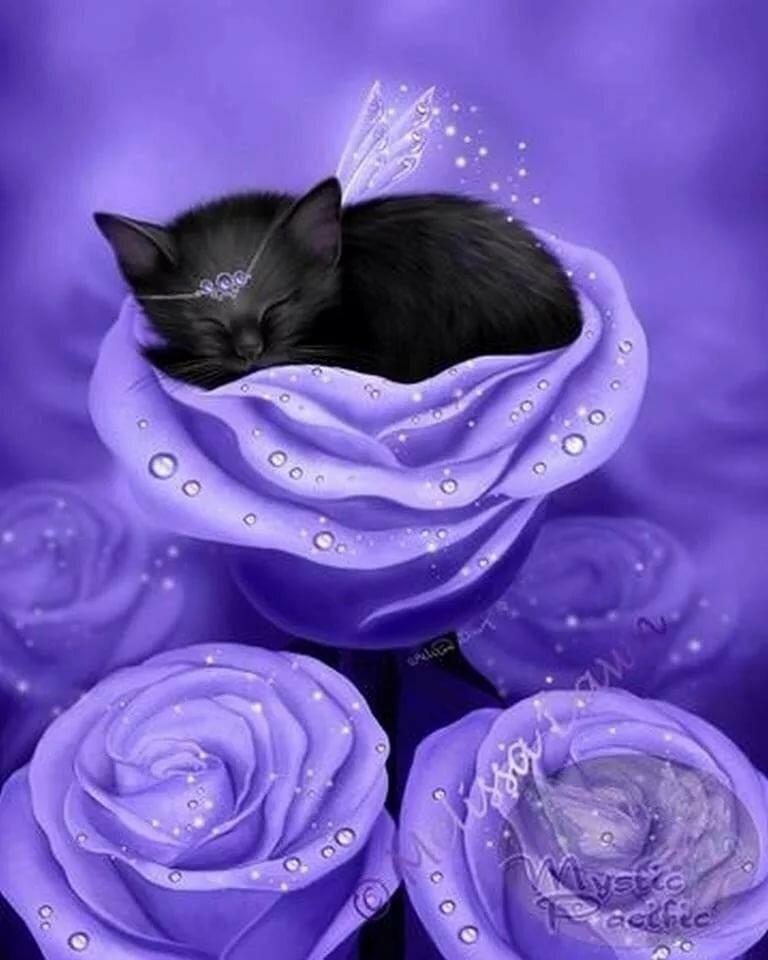 Платья, картинки черные кошки в розах