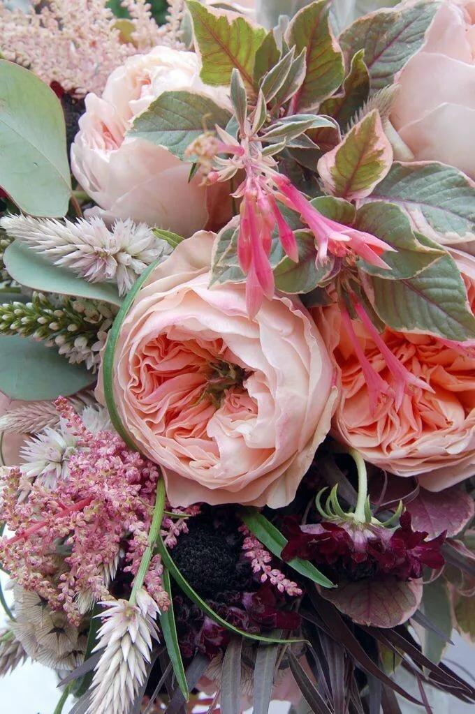Открытки с цветами необычные