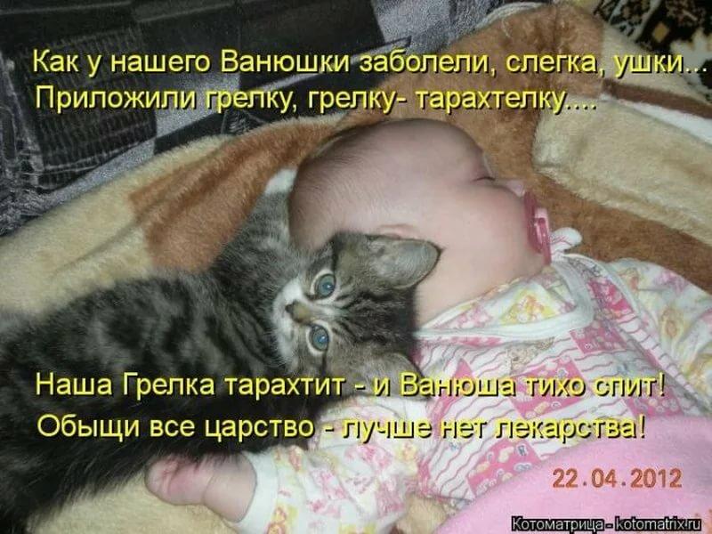 Смешные картинки с надписями про животных и детей, картинка понедельника