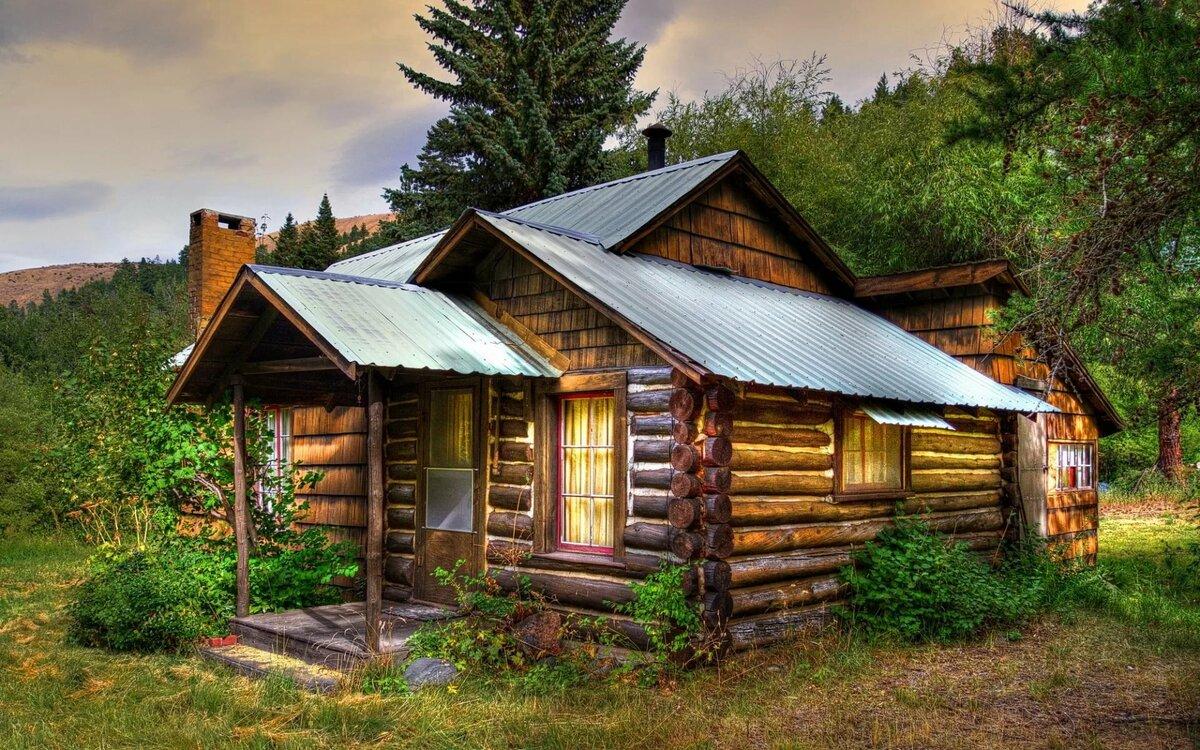 картинки деревянного деревенского дома директора силой загнали