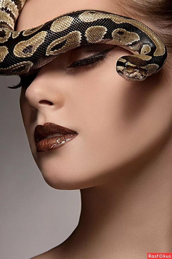 Женщина как змея картинки