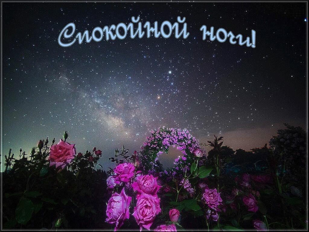Фото открытка спокойной ночи девушке