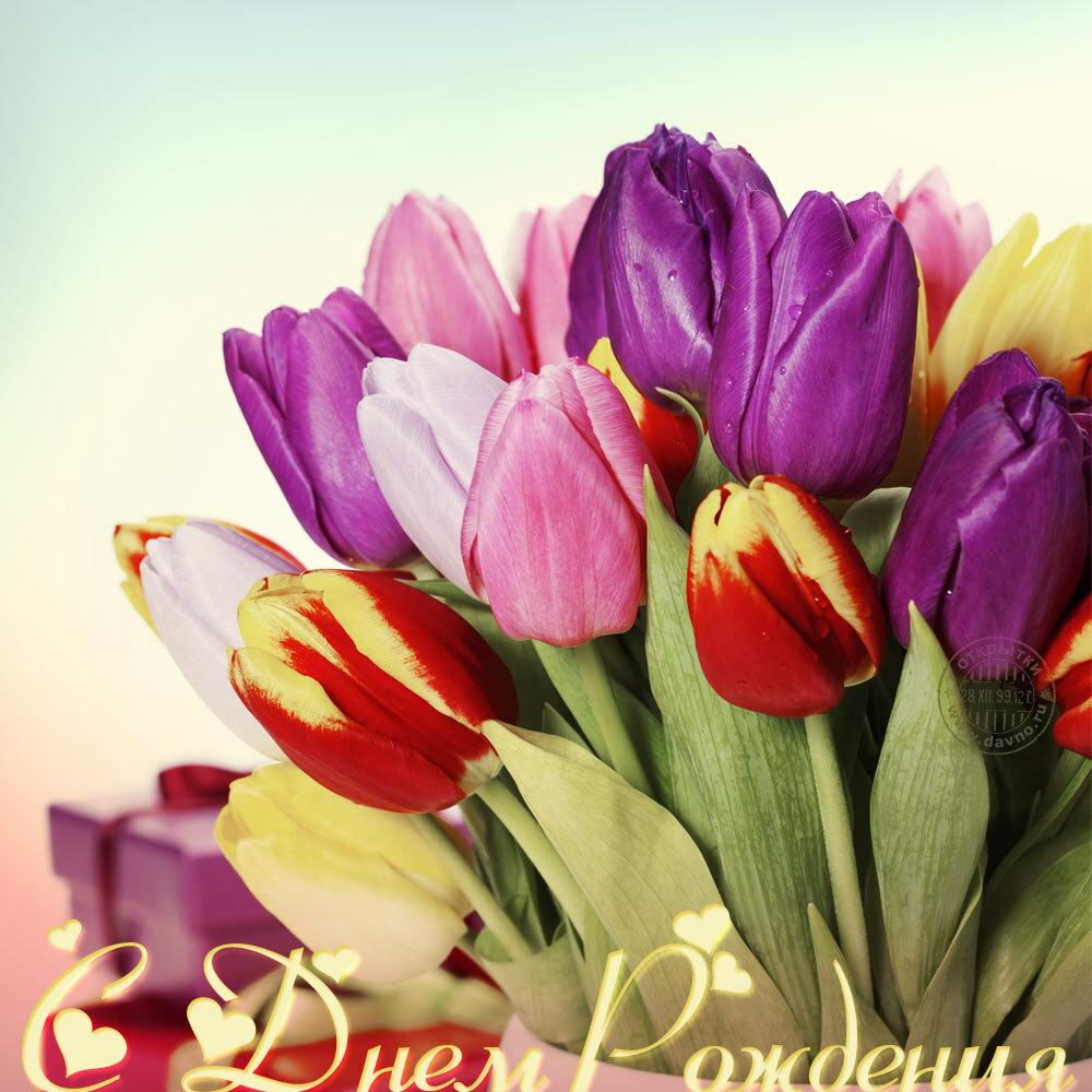 с днем рождения тюльпаны фото