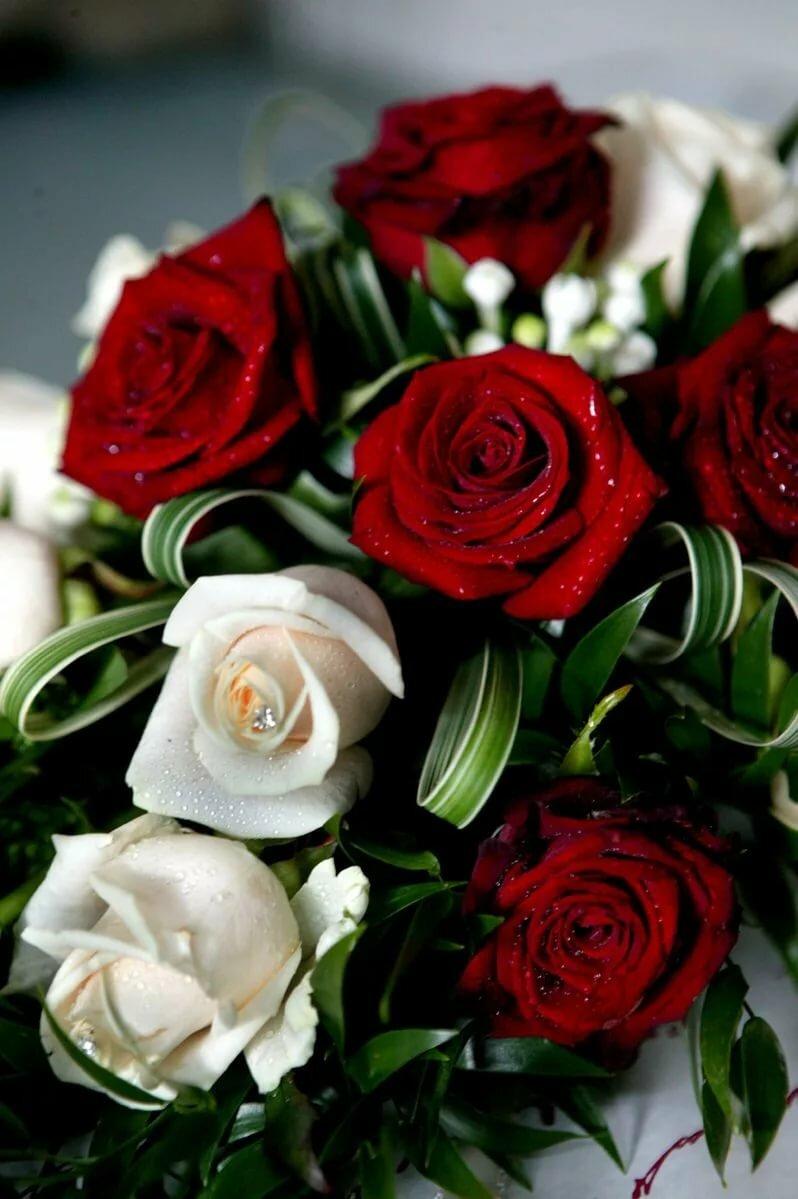 Розы с днем рождения гиф открытка, как