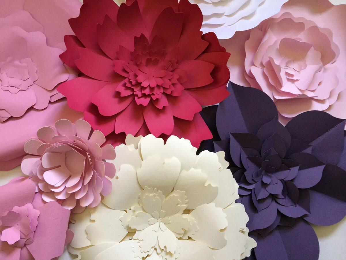 Объемные цветы из бумаги картинки, картинка смешная