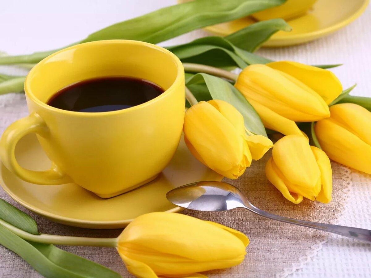 того, чашка с тюльпанами открытка книга