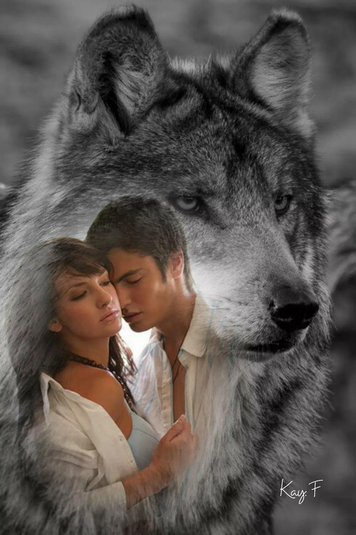 картинки человек и волк в одном телефоне пить напиток особенной