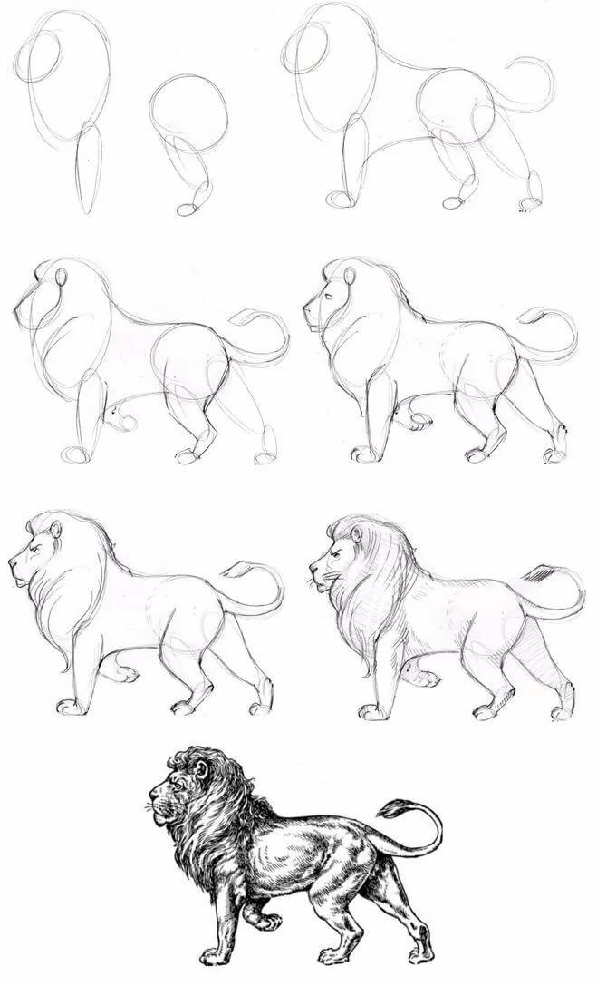 Красивые картинки для начинающих по рисованию
