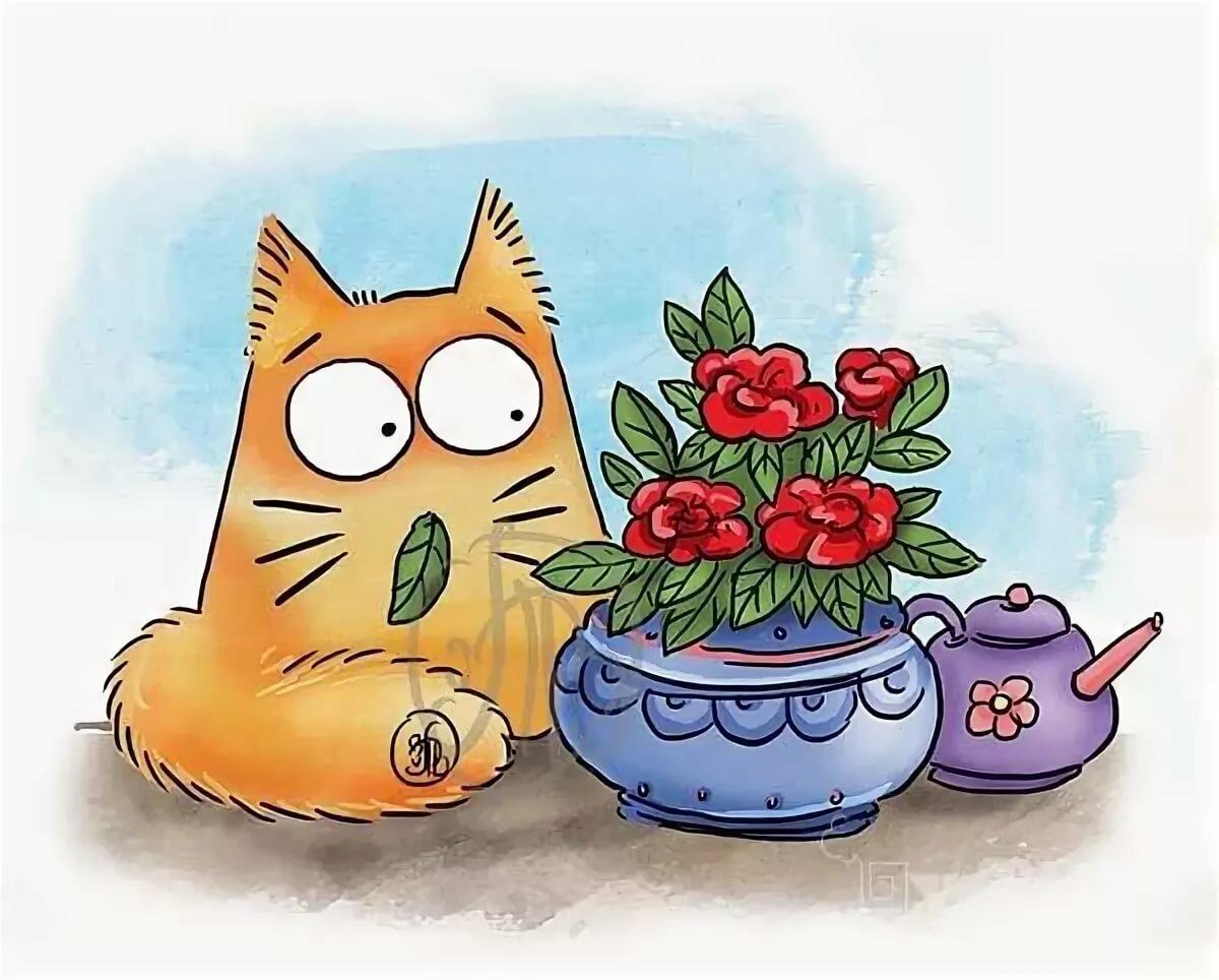 самый смешной кот рисунок