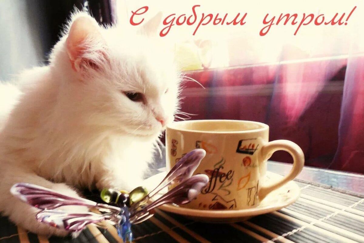 Рокерские открытки с добрым утром, поздравление