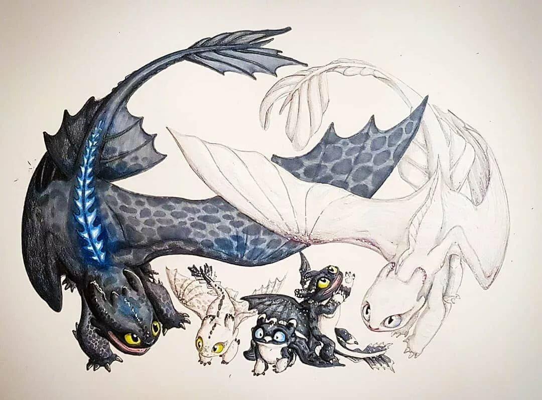 Картинки как приручить дракона нарисована