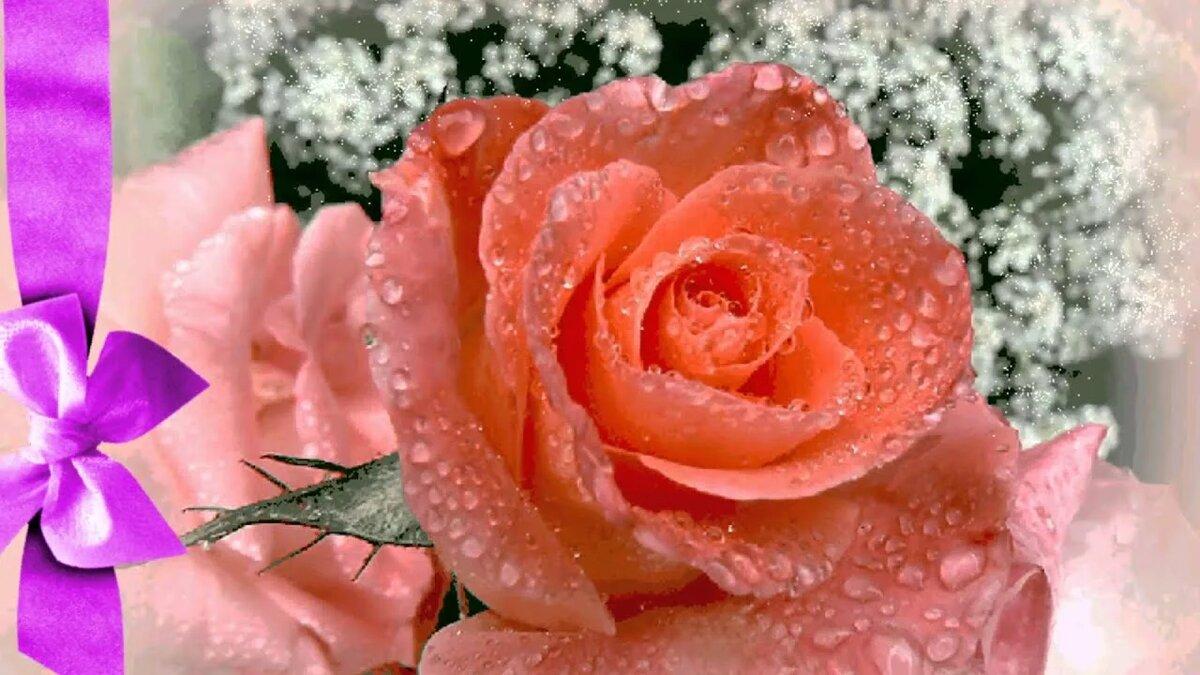Анимированные открытки с розами красивыми, открытка для