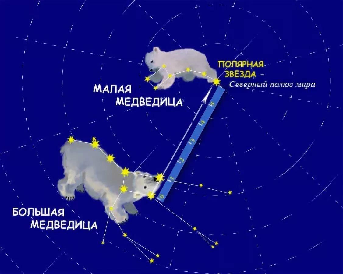 звезды в созвездии большой медведицы картинки