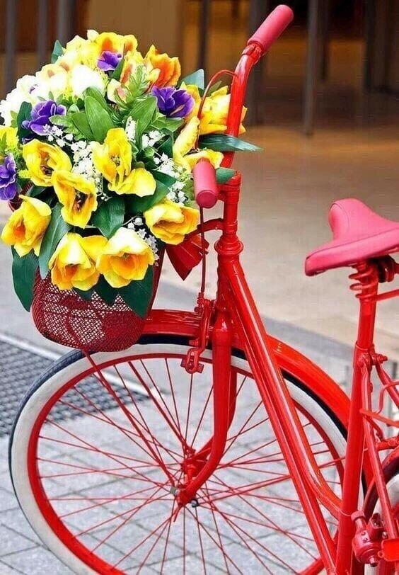 Картинка велосипеда с цветами