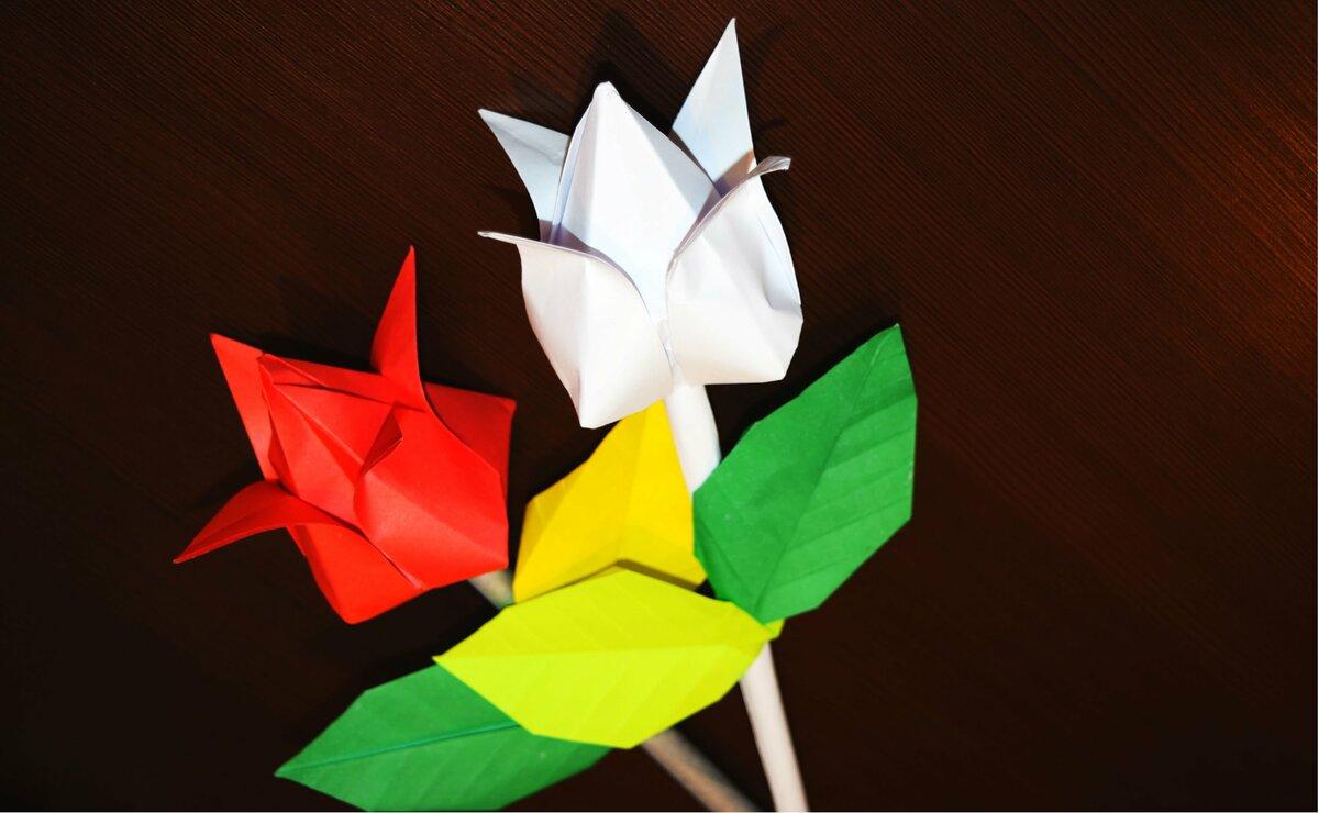 оригами своими руками из цветной бумаги основном состоит овсянки