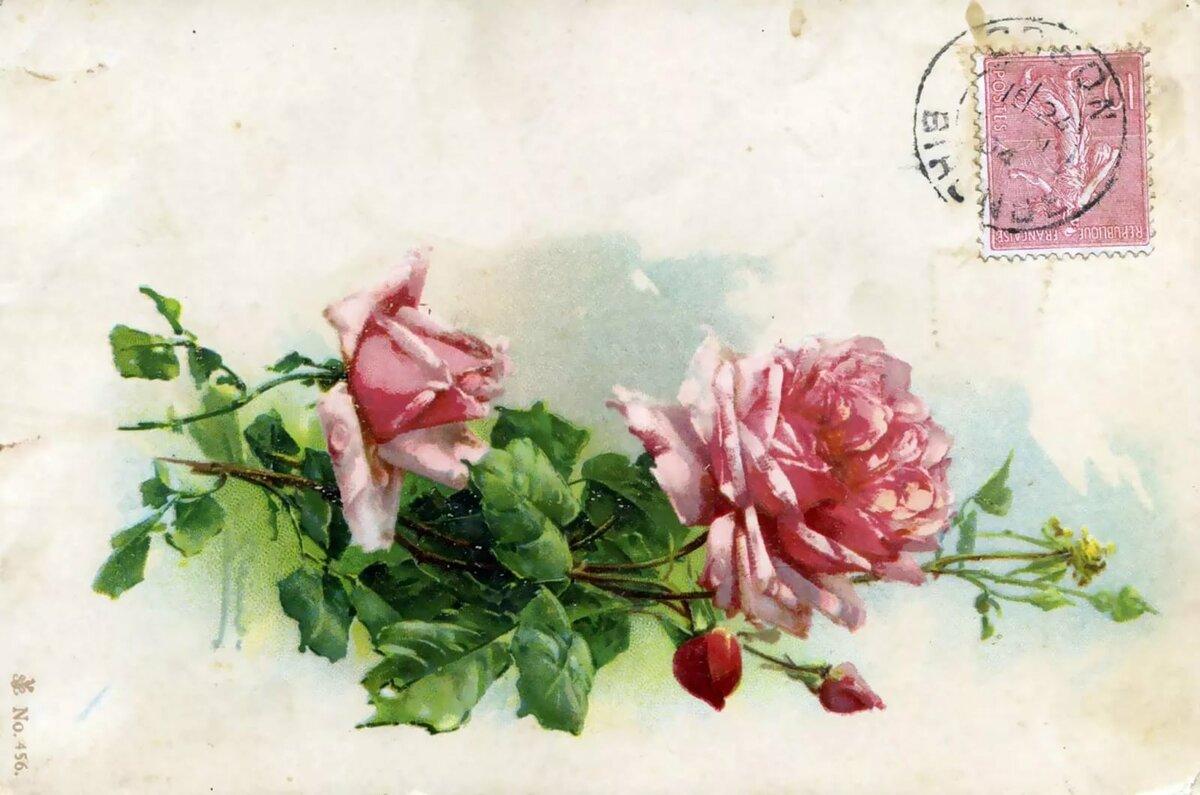Открытки новым, открытка розы в конвертер