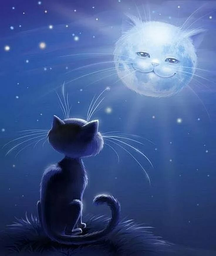 Картинки лунной кошки