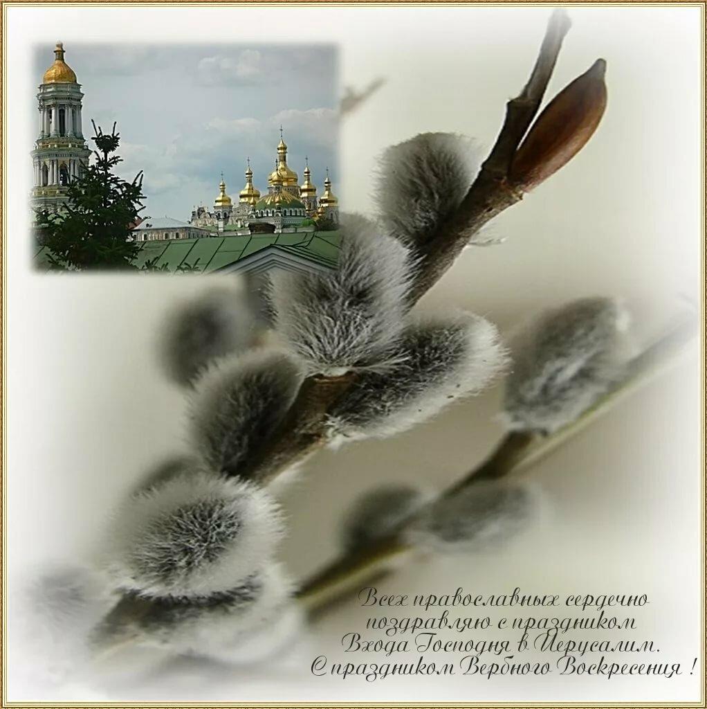 с вербным воскресеньем картинки советские выпускников