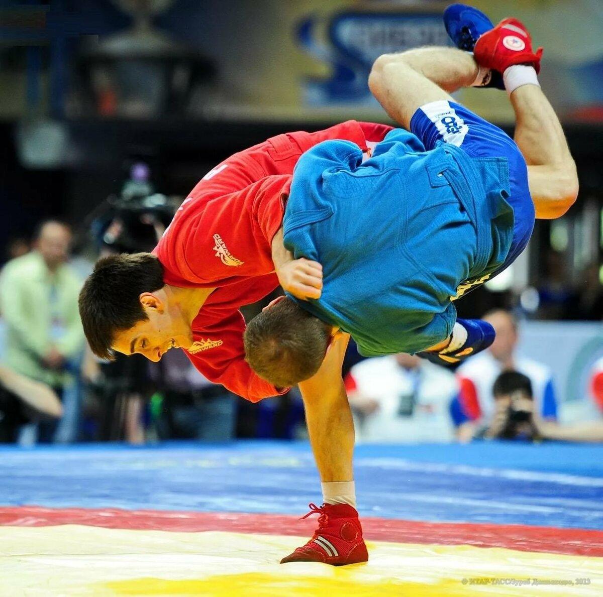 самбо спорт фото обычно образуются