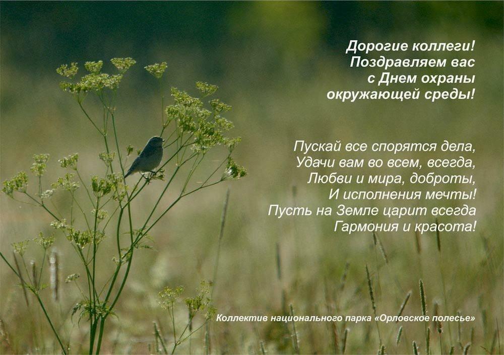 Поздравление с днем рождения экологов