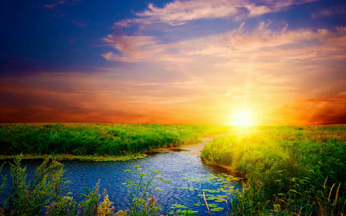 Картинки лето природа рассвет
