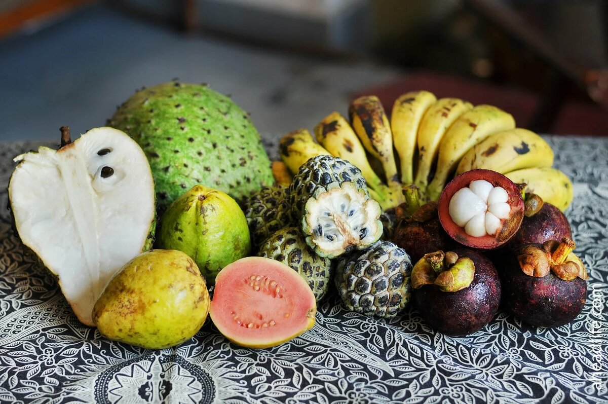 этом название экзотических фруктов с картинками наслышке
